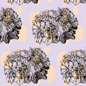 Dotty hydrangea / lilac&peach