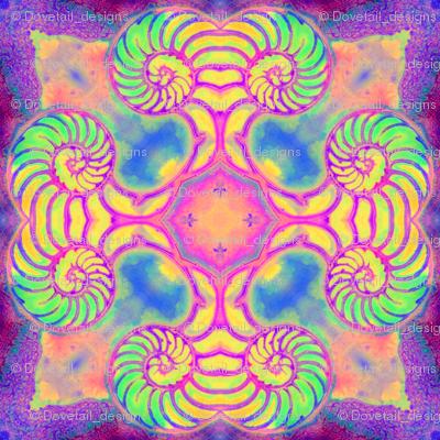 Nautilus Dance Mandala 2