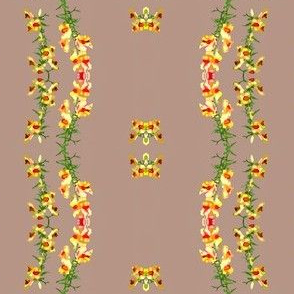 Color Block Snapdragons