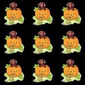 Rrrrhalloween_doxie_shop_thumb