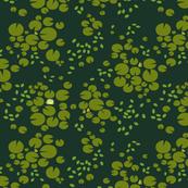 Lakeside - Lilypads