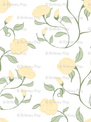 Pastel Roses on White