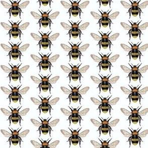 BUMBLE BEES To Happy Honey
