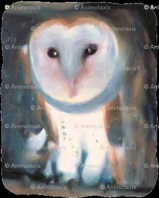 Barn Owl, L
