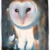 Rrrr015_barn_owl_l_shop_thumb