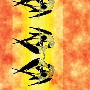 Macaw Border