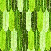 Rrrrgreen_shop_thumb