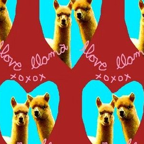 Llama Llove