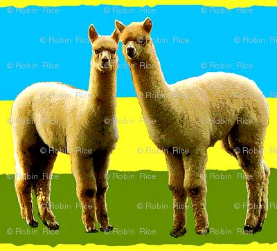 Llama Llove II