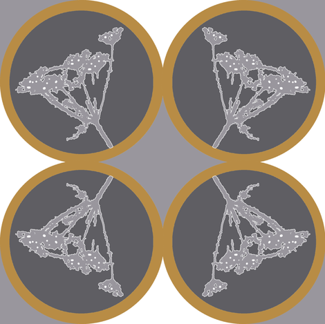 coriander_circles
