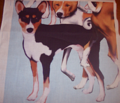 Rrbasenji_continuous_comment_104118_preview