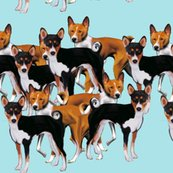 Rrbasenji_continuous_shop_thumb