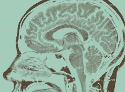 Little Brains in Aqua and Nutmeg