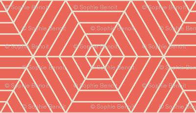 Hexagon Webs in Peach