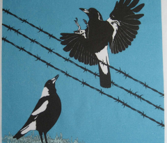 Magpies: learn to fly and food call