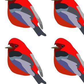 pillow size - bird 2