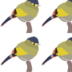 pillow size - bird 5