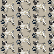 Pugs and Pawprints