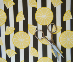 Rlemons_on_stripes_comment_226849_thumb