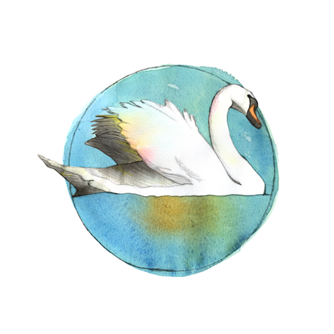 Winter Swan fabric by sandeehjorth on Spoonflower - custom fabric