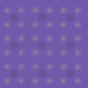 Purple compass design.