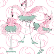 Ballet basics by Mes Dames Flamingoes