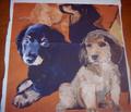 Rrrrdachshunds_mural3_comment_104115_thumb