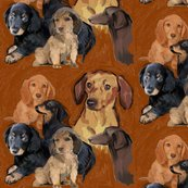 Rrrrdachshunds_mural3_shop_thumb