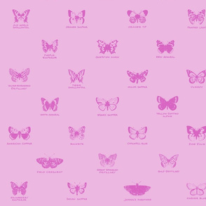 butterfly alphabet - pale pink