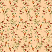 Rditsyrusfloralapricot_shop_thumb