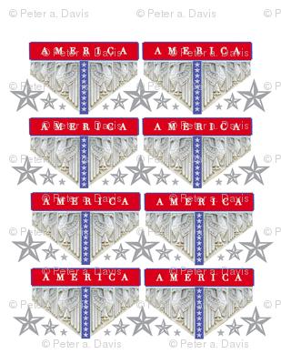 AMERICA_8_up-8
