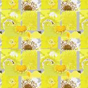 Flower Centers - grey, yellow &  burnt sienna
