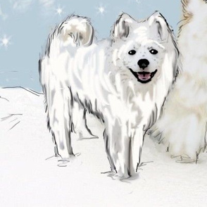American Eskimo and Snowflakes