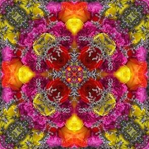 leslie kaleidoscope 1