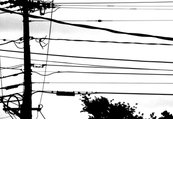 Rrrsilhouette-powerlines_shop_thumb