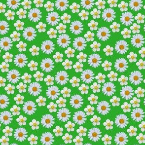 Ditsy Daisies and strawberry flowers