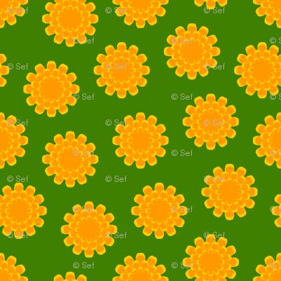 a myriad of marigolds