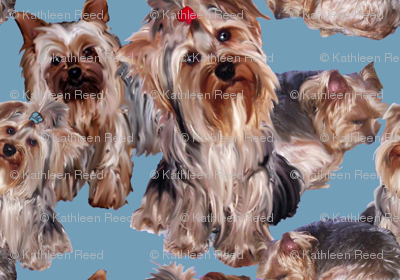 Yorkshire terrier fabric