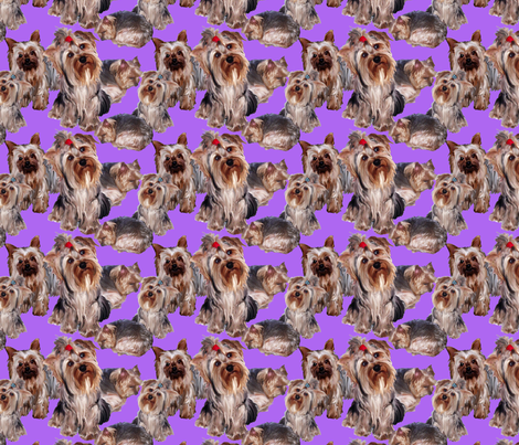 lavender Yorkshire terrier fabric fabric by dogdaze_ on Spoonflower - custom fabric
