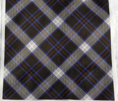 Black, Blue and White Plaid
