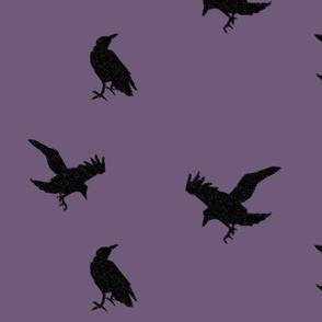 Raven Flight - Plum