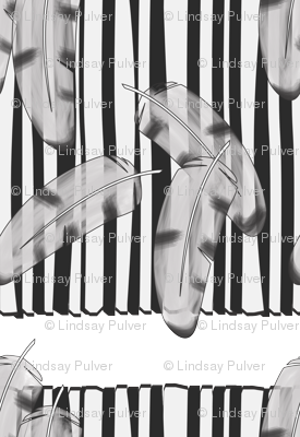 Feathers and Stripes B&W