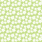 Apple Green Daisies