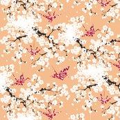 Rrcherryblossom_apricot.ai_shop_thumb