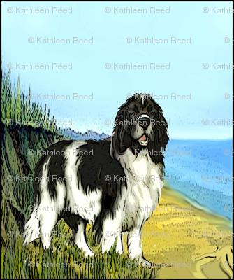 Landseer Newfoundland Beach Scene Fabric
