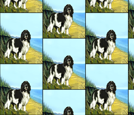Landseer Newfoundland Beach Scene Fabric fabric by dogdaze_ on Spoonflower - custom fabric