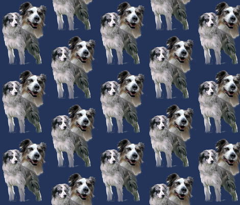 Blue Merle Australian Shepherds  fabric fabric by dogdaze_ on Spoonflower - custom fabric