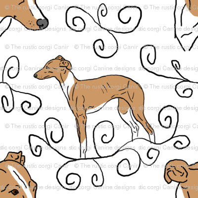 Italian Greyhound Elegance