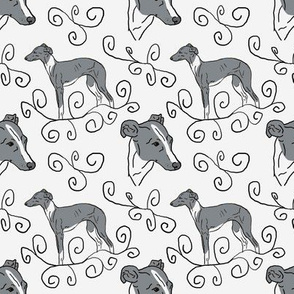 Italian Greyhound Elegance - gray