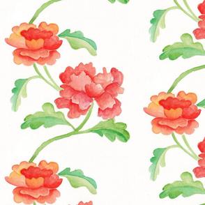 Scarlet Peonies